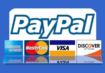 PaypalLogo1 Thanh toán trực tuyến Paypal dần chiếm ưu thế