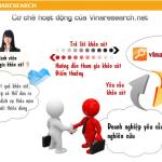 Vinaresearch - site khảo sát của Việt Nam