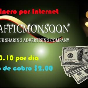 Giới thiệu cách kiếm tiền chi tiết với Trafficmonsoon