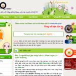 Infoq.vn – Trả lời khảo sát kiếm tiền của Việt Nam